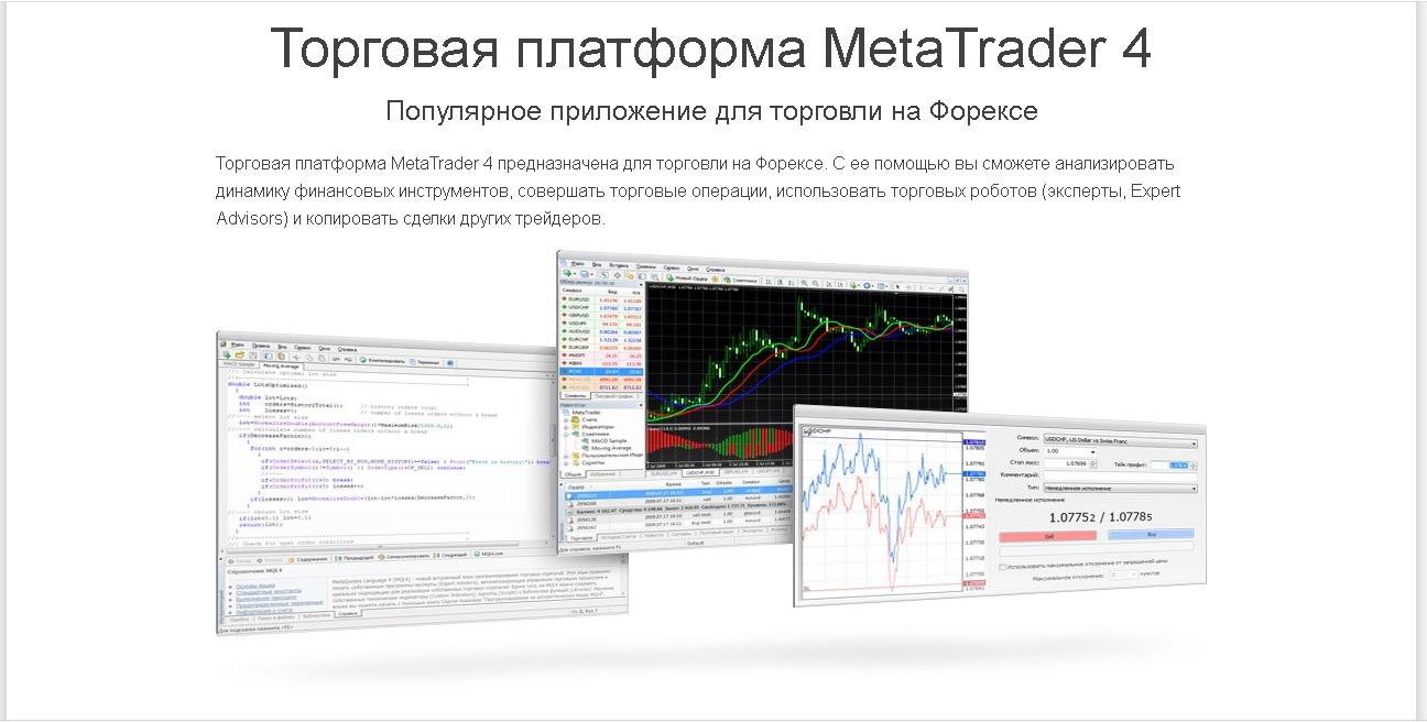 Buy a turnkey Forex Brokerage Company